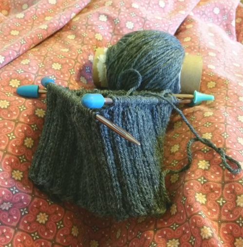 knitting, knit hat, dpns, wip, wool